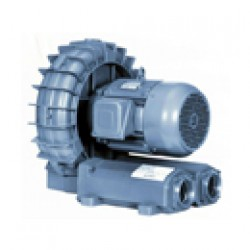 Vacuum Pumps and Regenerative Blowers